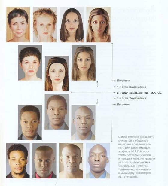 Эффект среднего типа лица (Most average facial appearance effect)